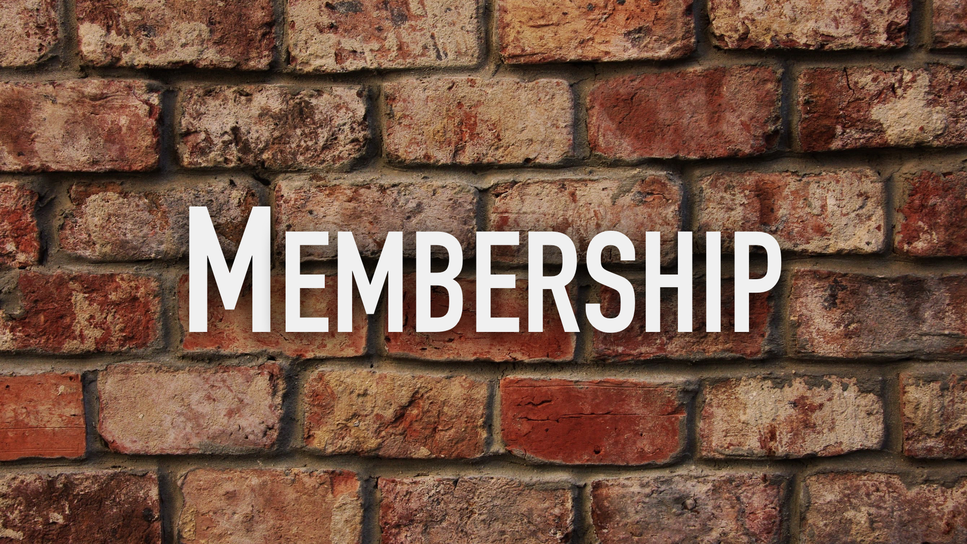 membership-bricks-graphic-001